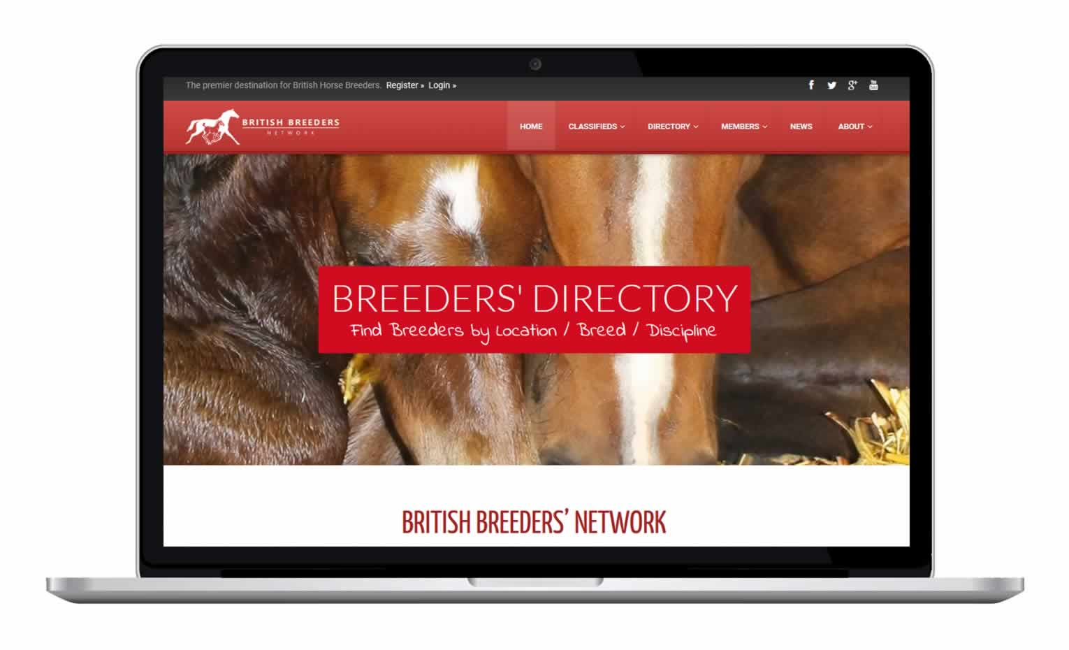 British Breeders Network - Hores Breeders focused on British Bred Horse Breeding