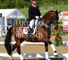 Stars on show at Hartpury Festival