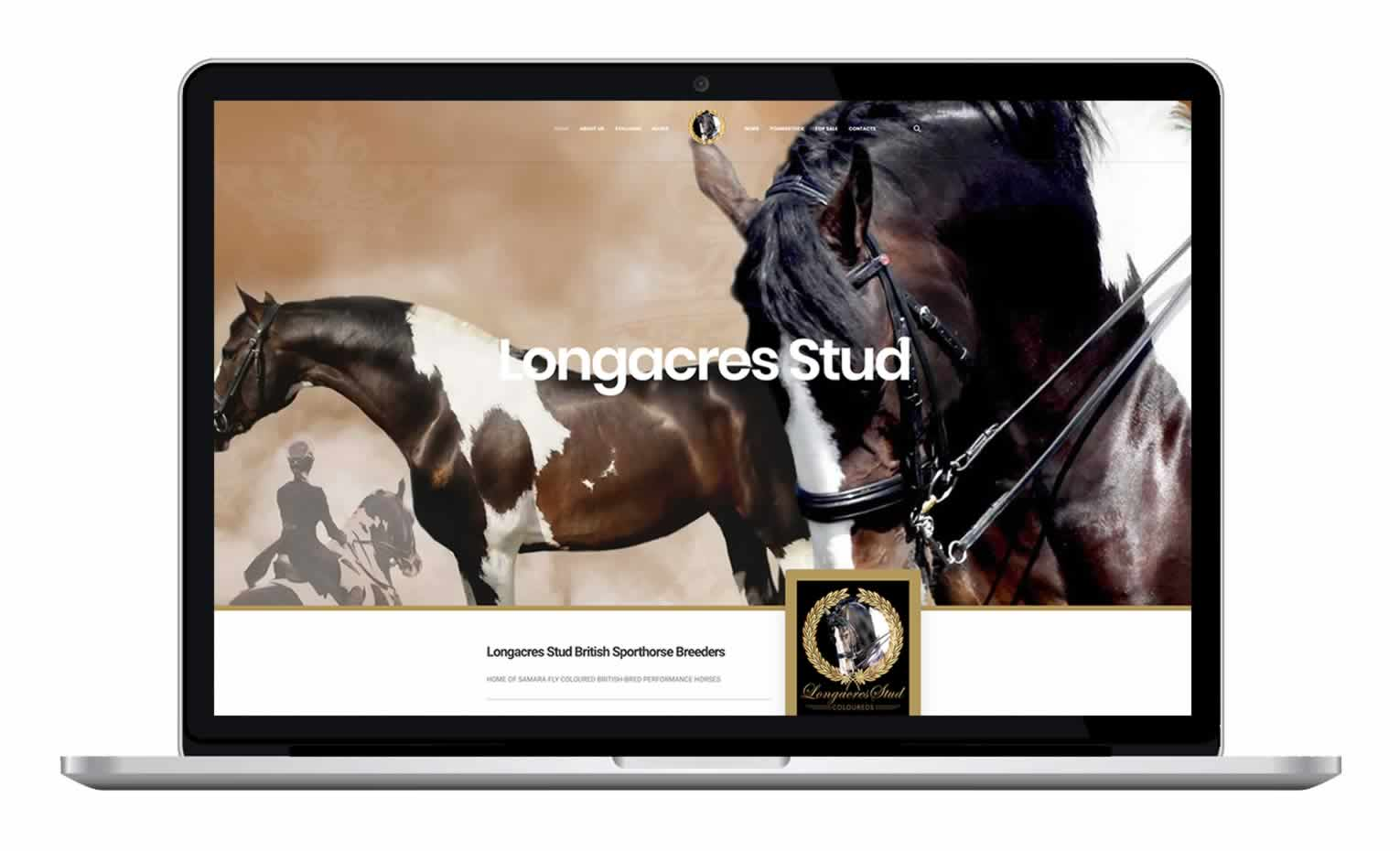 Longacres Stud - Coloured Horse Breeder Website