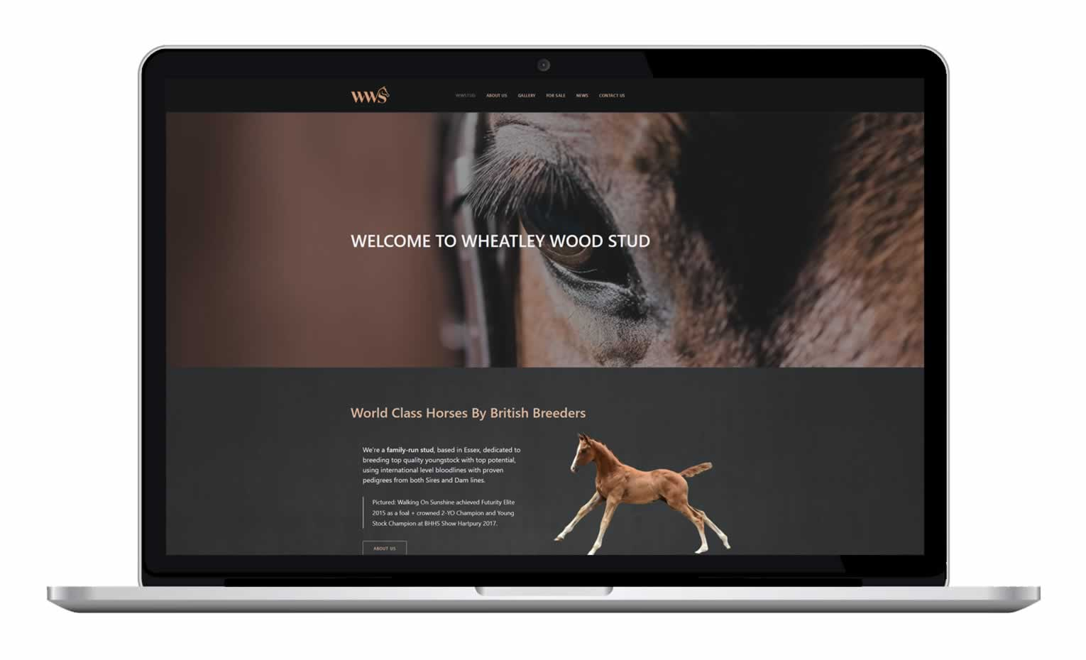 WW Stud - Horse Breeder Website