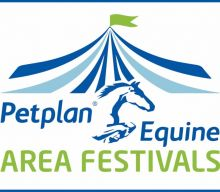Petplan Equine Area Festival Final qualifying ratios '19